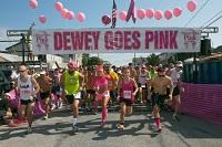 dewey-goes-pink-img1start