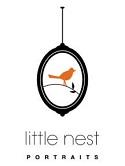 little-nest-logo-web